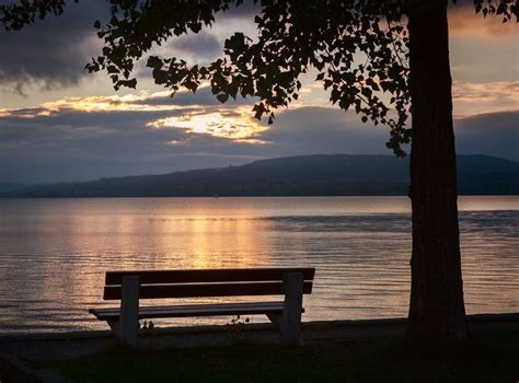 lonely bench 17 best images about a lonely bench on pinterest parks