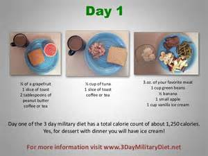 How to use the 3 day military diet 3 638 jpg cb 1367677316