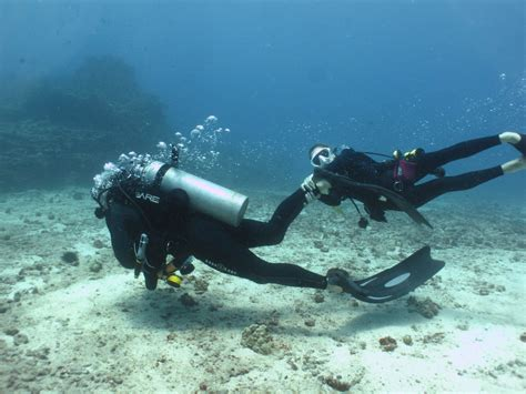 dive vacation vacation scuba diving packages for everyone island