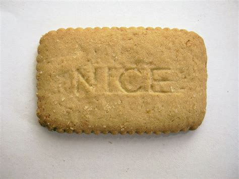 biscuit the file biscuit jpg