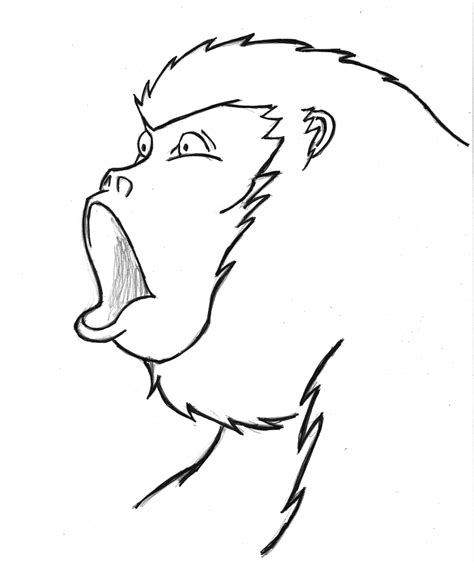 how to draw a doodle monkey rebel flag drawings book covers