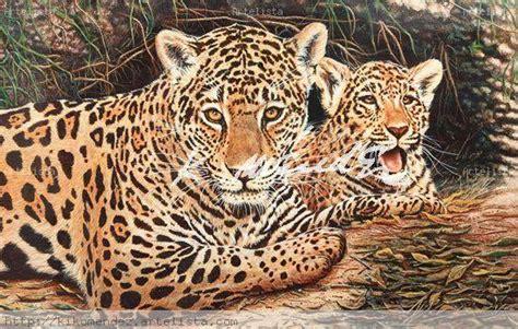 imagenes con jaguar animales el jaguar