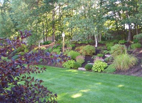 landscaping a hill in backyard 25 best ideas about hillside landscaping on pinterest