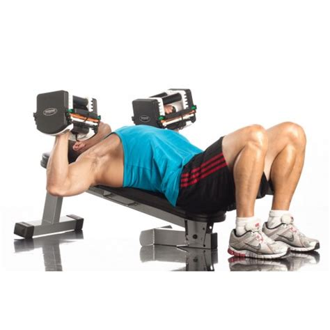 power block bench powerblock travel bench workout for less