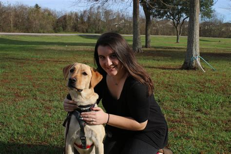 schools for service dogs when service dogs go to school houston media