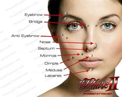 piercing diagram piercing diagram images piercings