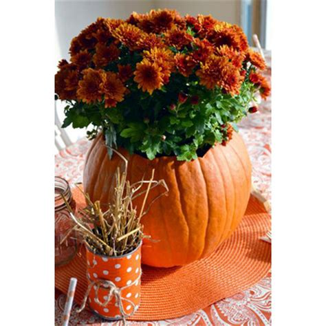 make your own fall decorations 10 fall decorating ideas to make your own interior