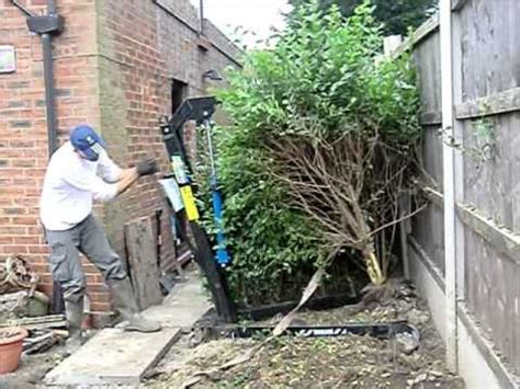 removing trees from backyard how to remove hedges youtube