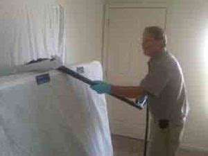 bed bug clean up got bed bugs detection treatment elimination call
