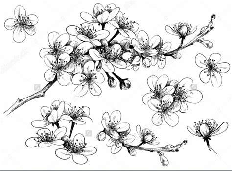gambar taman bunga hitam putih kata kata