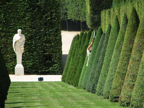 Buchsbaum In Form Schneiden 2025 by Buchsbaum Formen Einige Tipps Und Beispiele Archzine Net