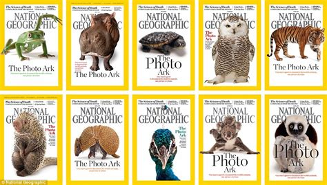 National Geographic Indonesia April 2006 photographer joel sartore is on a mission to capture 12 000 endangered animals daily mail