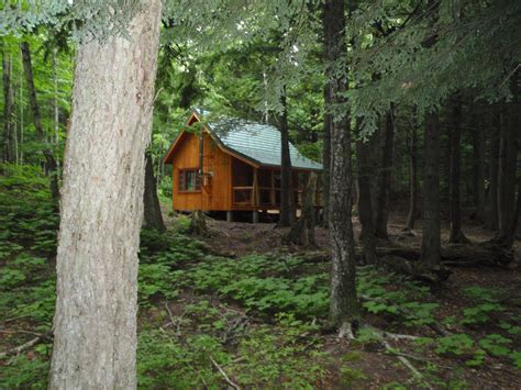 forest cabin redesign on a modest budget decor advisor adventure journal e2 80 93 inhabit sustainable forest