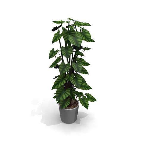 Als Zimmerpflanze by Zimmerpflanze Einrichten Planen In 3d