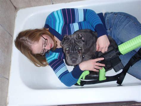 i am legend bathtub i am legend bathtub 28 images i am legend bathtub