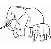 Rainforest Animals Clipart Black And White Cartoon Cute Images