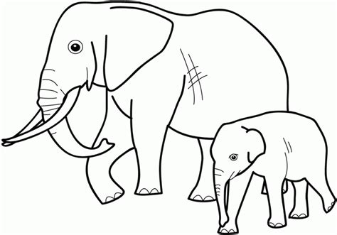 coloring pages wildlife animals cute animal coloring pages free printable pictures