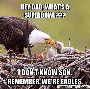 Eagles Suck Memes - 153 best laugh and misc images on pinterest