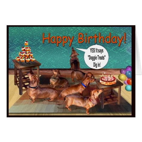 Dachshund Birthday Meme - dachshund birthday meme dog breeds picture