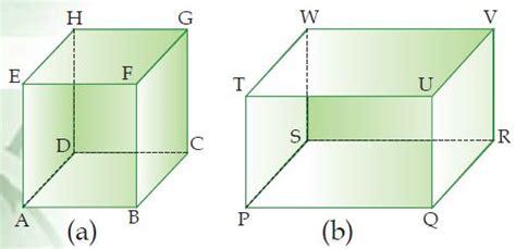 langkah membuat gambar 3d di kertas langkah langkah cara membuat menggambar kubus dan balok