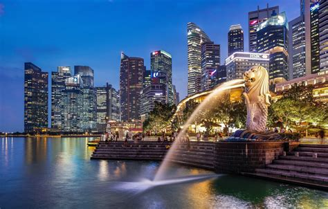 wallpaper  city singapore fountain singapore