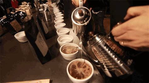 Code Black Cupping With Cafe Imports   Recap & Full List Of Coffees Served!