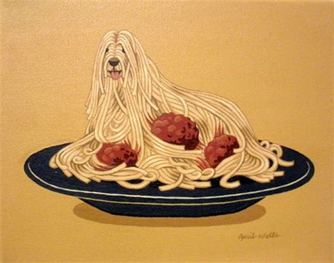 can dogs eat noodles image gallery spaghetti dogs