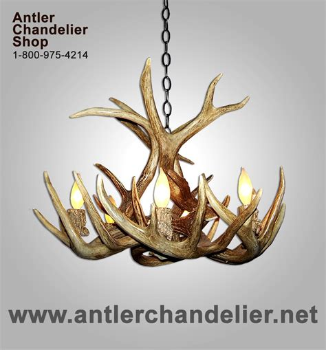 Small Antler Chandelier Real Antler Chandeliers Antler Chandelier
