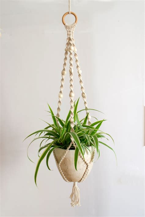 Hanging Macrame Plant Holder - macrame plant hanger plant holder hanging planter home