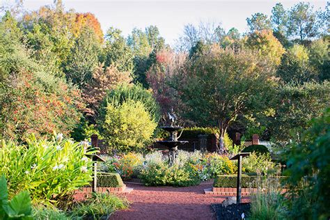 Uga Botanical Gardens Heritage Garden Uga State Botanical Garden