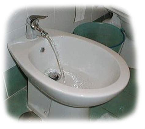 Bidet Toilet Seat Picture   Personal Hygiene Bidet