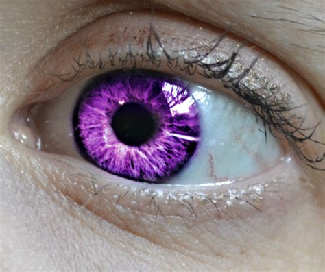 purple eye color purple eye color www imgkid the image kid has it