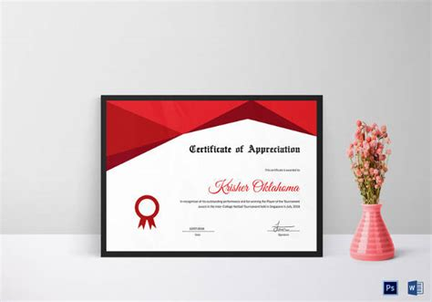 netball certificate template certificate of appreciation template 27 in