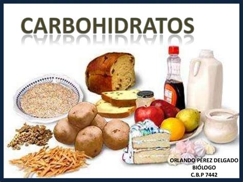 proteinas o carbohidratos carbohidratos