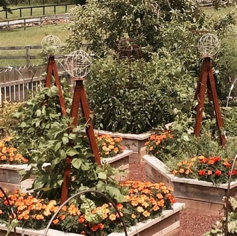 Kitchen Garden Arbor 1000 Images About Modern Trellis On Gardens