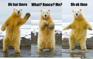 Dancing Bear Meme - dancing polar bear by turtles meme center