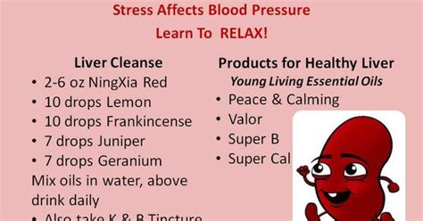 Essential Oils To Detox Kidneys by Living Essential Oils Blood Pressure Liver Cleanse