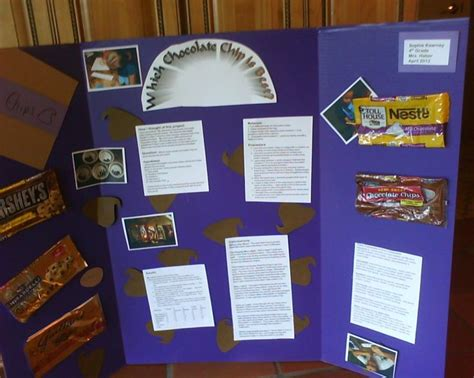 chocolate science project 16 best science fair images on pinterest science