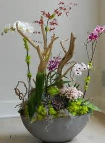 orchid planter ideas on orchids planters and