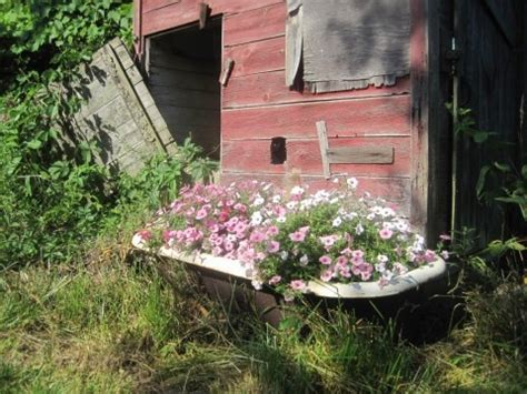 bathtub flower bed 24 best images about bathtub flower beds on pinterest gardens antiques and front