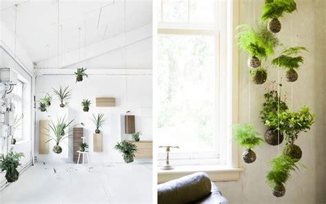 como decorar plantas con macetas ideas para decorar con plantas