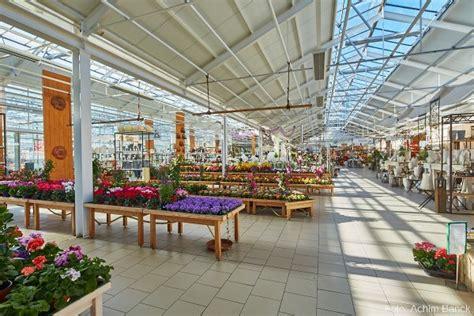Pflanzen Und Gartenbedarf 790 by Planzenhof Paulwitz Pflanzen Floristik Accessoires