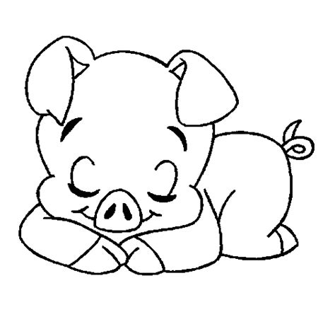 baby pigs coloring page baby pig coloring pages pig and piglet coloring pages