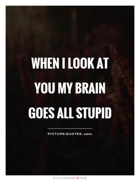 stupid quotes stupid quotes and sayings