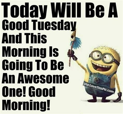 tuesday images ideas  pinterest happy tuesday