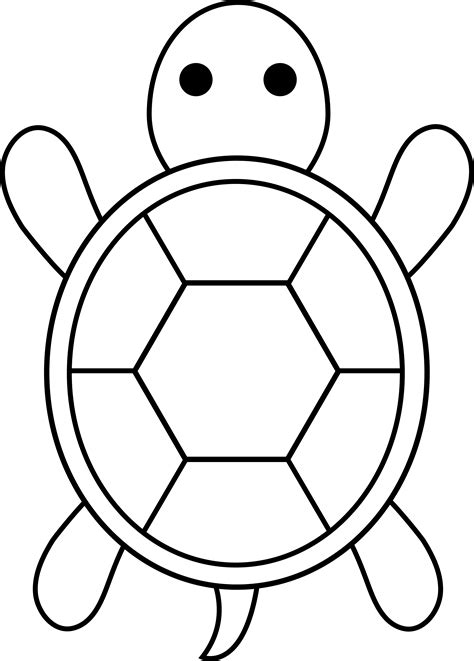 Turtle Outline Vector by Colorable Turtle Free Clip