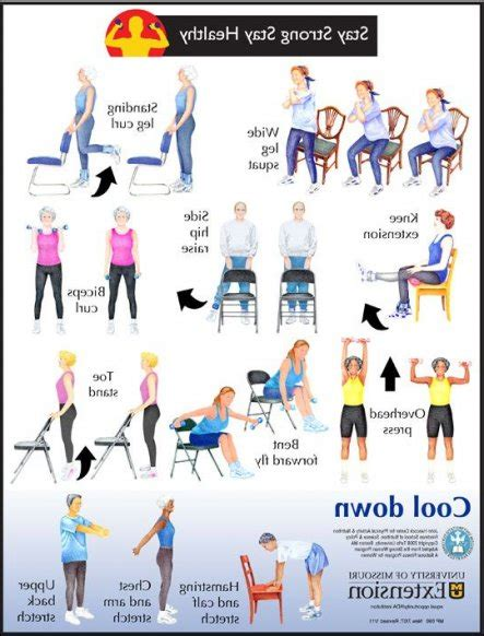 Armchair Exercises For The Elderly Dvd by Chair Exercises For Seniors Images Armchair