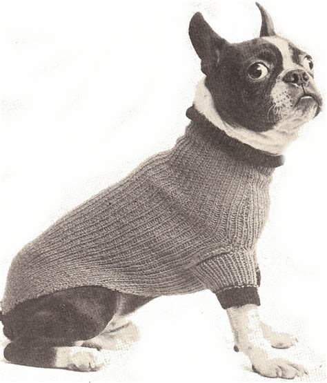 pattern for dog sweaters free the best sweaters and coats to knit for your dog free