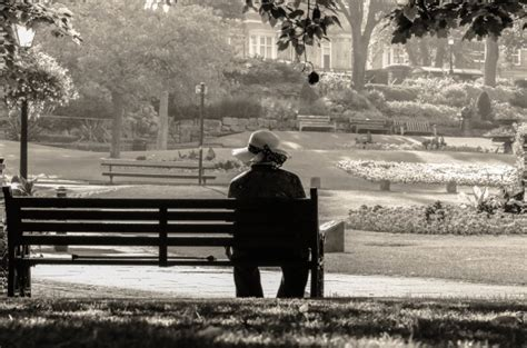sitting on the bench woman sitting alone on a bench free stock photo public
