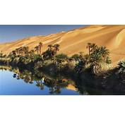 Desert Oasis In Libya  Feel The Planet